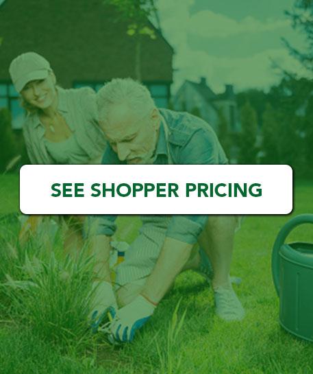 shopper-pricing