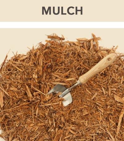 Mulch1